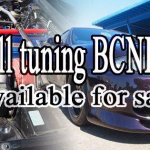 4283 BCNR33 GT-R